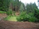 Waldwegebau